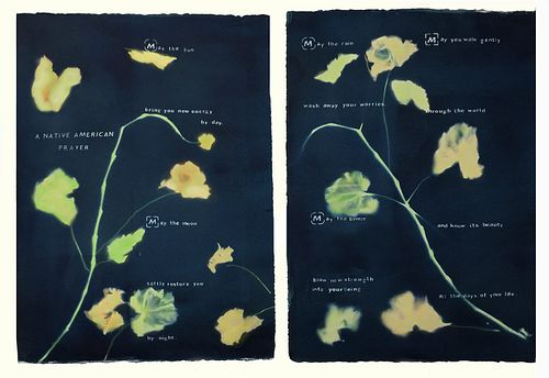 Laura Blacklow, Continuing ed courses at SMFA, Native American Prayer, a Diptych from the portfolio, Backyard Botanicals