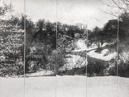 Joseph Moccia, MFA '16, Arboretum I