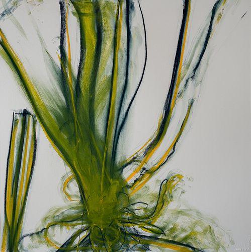Ruth Fields, BFA '89,  MFA '96, Botanical Variations