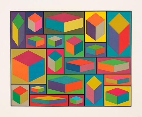 Sol LeWitt, Distorted Cubes (E)
