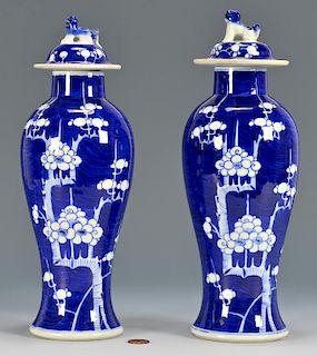 Pr. Chinese Porcelain Baluster Vases, Hawthorne Pattern