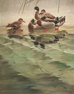 Francis Lee Jaques (1887-1969) Mallards