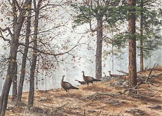 David Hagerbaumer (1921-2014) Apache Country - Turkeys