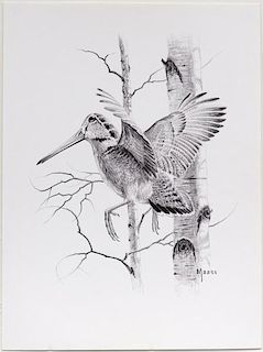 David A. Maass (b. 1929) Woodcock
