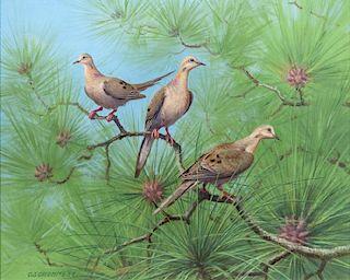Owen Gromme (1896-1991) Doves in the Long Leaf Pine