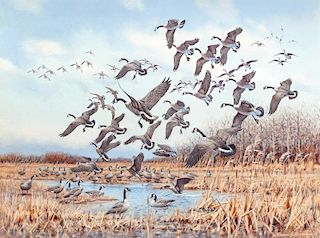 Owen Gromme (1896-1991) Horicon Marsh - Canada Geese