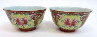 Pair Of Qianlong Enamel Porcelain Bowls
