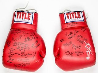 Large Scale Blue Horizon Notables Signed Gloves
