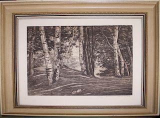 "Luigi Lucioni (Vermont 1900-1988) Through the Birches engraving 9 x 10"" pencil signed lower right"