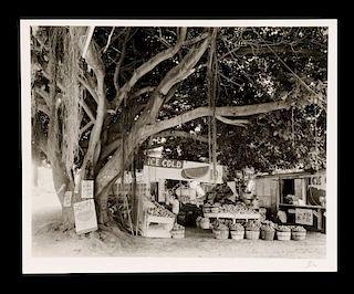 "Berenice Abbott, ""Miami Fruit Market"", 1954"