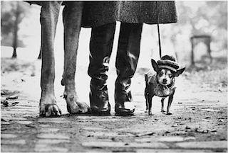 """Elliot Erwitt """"Dogs New York, 1975"""""""