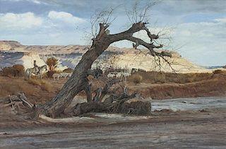 Ray Swanson | Navajo Land