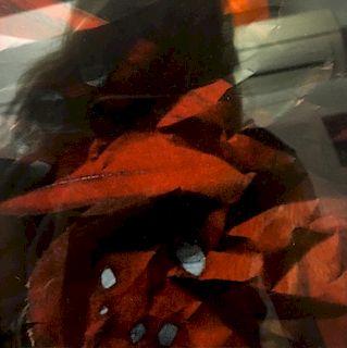 Birgit Wolfram, Visual Poetry II