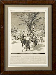 """The New Orleans Exposition - Planting Trees,"" Dec"