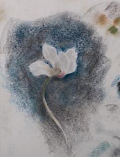 Julien Binford Floral Pastel on Paper