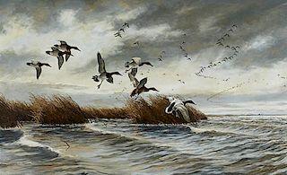 David A. Maass (b. 1929) Canvasbacks