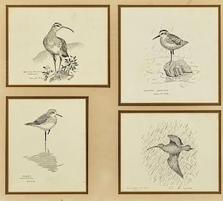 John Henry Dick (1919-2005) Four Shorebird Pen and Ink Drawings