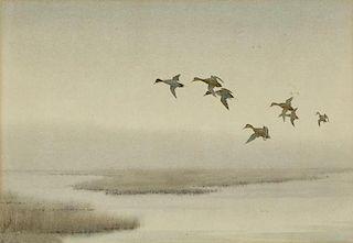 Joseph Day Knap (1875-1962) Pintails at Dawn