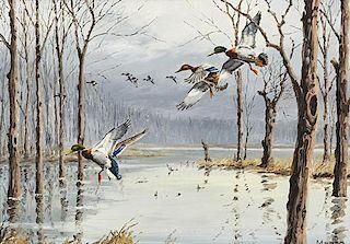 David A. Maass (b. 1929) Mallards Landing