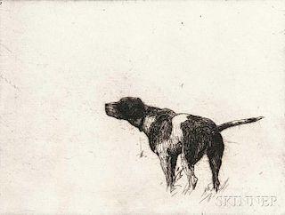Frank Weston Benson (American, 1862-1951)      Pointer Dog