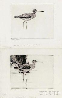 Frank Weston Benson (American, 1862-1951)      Two Impressions of Yellowlegs No. 4