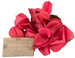 Spring Flowers Used by Buatier de Kolta.