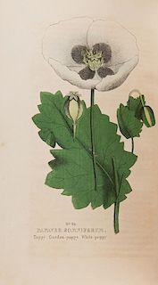 Good, Peter. Good's Family Flora & Materia Medica Botanica.
