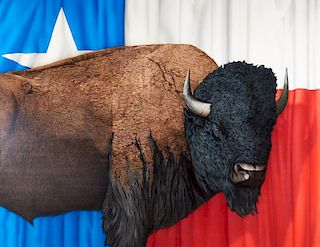 Tom Palmore | Great American Buffalo