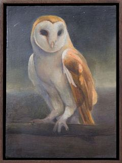 DAVID MOLESKY (b. 1977): BARN OWL