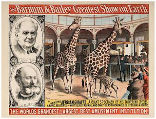 Barnum & Bailey Greatest Show on Earth. A Genuine African Giraffe.