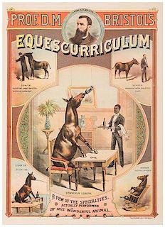 Professor D.M. Bristol's Equescurriculum.