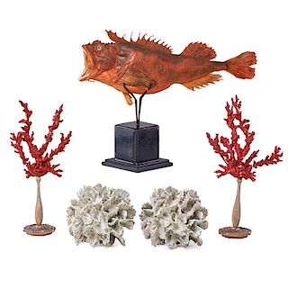 SCORPION FISH, CORALS  AND BEAUTIES