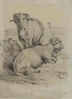 Possibly Rosa Bonheur. Pencil on Paper. Rams, 1848