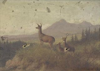 HINCKLEY, Thomas H. Oil on Canvas. Deer in