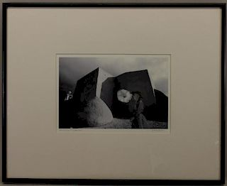 """Georgia (O'Keeffe) Talks to Jimson Weed"" Image"