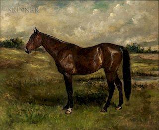 Gustav Muss-Arnolt (American, 1858-1927)  Portrait of a Thoroughbred