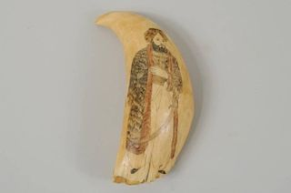 Scrimshaw Whale's Tooth
