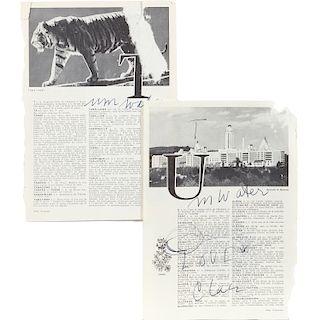 """Claes Oldenburg, """"Tumwater"""""""