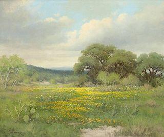 G. Harvey b. 1933   Texas Coreopsis