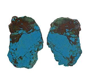 Stephen Dweck Turquoise Earrings
