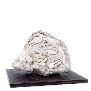José Manuel Ruiz Salazar. Cocodrilos. Talla en coral intervenido con aplicaciones de hueso. Con base de madera.