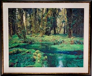 David Brookover Large Scale Photograph