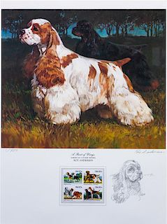 * An American Water Spaniel Photomechanical Reproduction 18 x 13 3/4 inches.