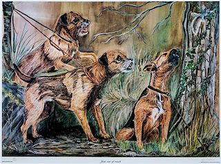 * Two Photomechanical Reproductions of Border Terriers Larger: 15 3/4 x 21 1/4 inches.