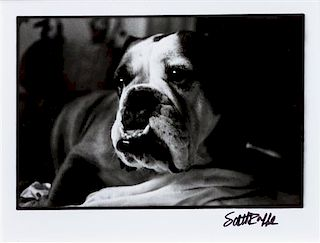 * Three Working of Art depicting Bulldogs Largest: 16 3/4 x 19 inches.