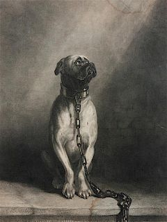 * Five Works of Art depicting Mastiffs Largest: 12 1/4 x 9 1/4 inches.