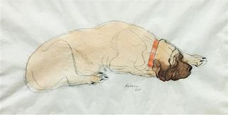 * Fourteen Mixed Media Drawings of Mastiffs Largest: 24 x 18 inches.