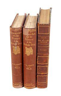 * Nine Reference Books regarding British Dogs