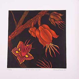 Eugenia Marcos. Árbol de las Manitas. Grabado sobre papel, 22/220. Firmado y fechado 2006. Sin enmarcar.