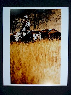 Untitled 2 (from cowboys & girlfriends series) - Richard Prince